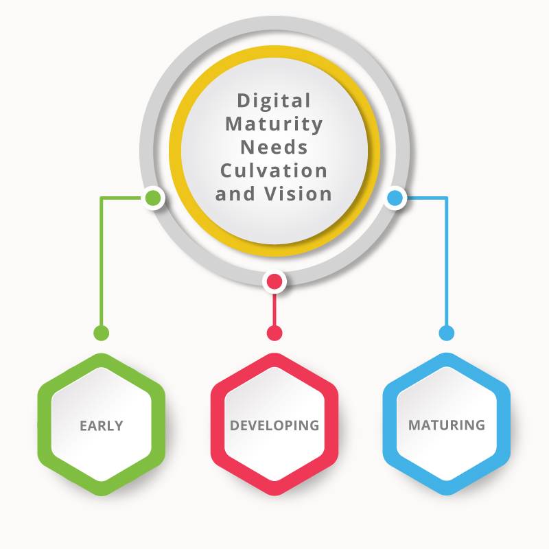 Digital maturity needs culvation and vision